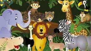 Godfy Dios Hizo los Animales Musica Infantil Cristiana