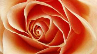 Memorias de Mi Vida (7) - Tu inolvidable sonrisa - Los Fredy's - Poemas de Amor