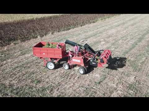 Hemp flower harvester - CBD & Hemp Products   Hemp Trade Market