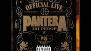 Pantera - Dom/Hollow