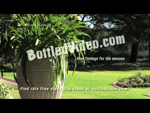 Free Stock Footage – Establishing Shot of a Winery in Cape Town South Africa by BottledVideo.com