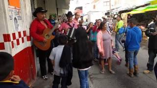 Los Luzeros De Rioverde En Rioverde S.L.P.
