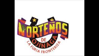 NORTEÑOS DE OJINAGA - TU RETIRADA