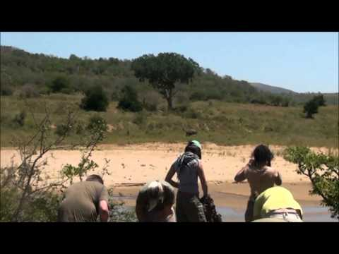 Trek in South Africa – Homira Rezai