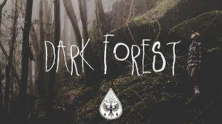 Dark Forest 🦇 - An Indie/Folk/Alternative Playlist (Halloween 2017)