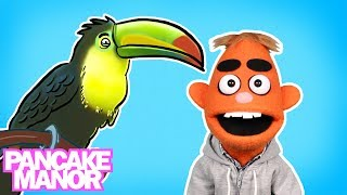 WHAT IS A BIRD SONG ♫ | Dance & Move | Kids Songs | Pancake Manor