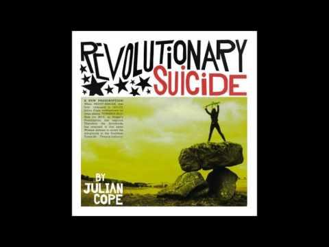 julian-cope-revolutionary-suicide-sotiris-k