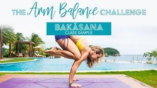 Arm Balance Yoga Challenge -- Bakasana, Crane Pose, Class One Sample with Kino
