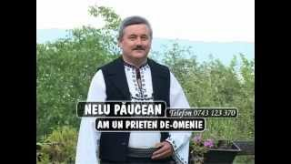 NELU PAUCEAN- AM UN PRIETEN DE-OMENIE
