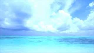 Chillout & Downtempo Music  ♫ Exist - Mind at Peace ♫