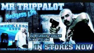 TRUCHA Mr. Trippalot feat Knightowl