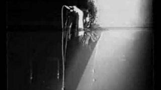 Peace, love & Pitbulls - Caveman (Live)