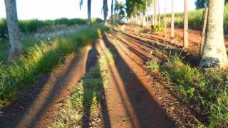 Caminho da Fé - 3* dia - Santa Rita do Passa Quatro à Tambaú