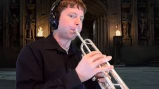 """Statues (from """"Harry Potter and The Deathly Hallows: Part 2"""") Trumpet Cover"""