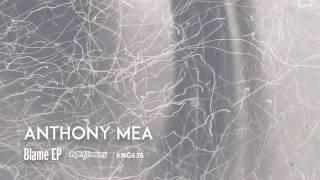 Anthony Mea - Blame (Original Mix)