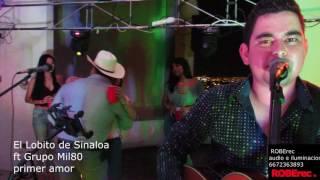 El Lobito de Sinaloa ft MIL 80  Primer amor