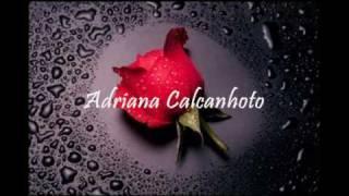 Depois de ter você - Adriana Calcanhoto