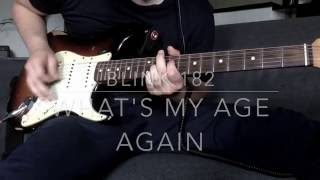 Blink 182 - What's My Age Again (guitar cover)