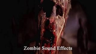 Zombie walking - Zombie Sound Effects