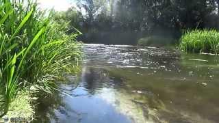 Hip Hop Instrumental & Russian River