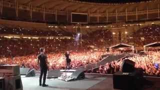 Foo Fighters Live From Backstage @ Maracanã 2015 - Something From Nothing