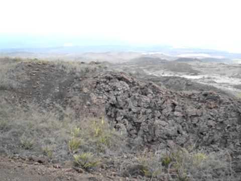 Galapagos 2011