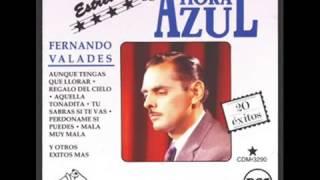 Fernando Valadez   El Diccionario