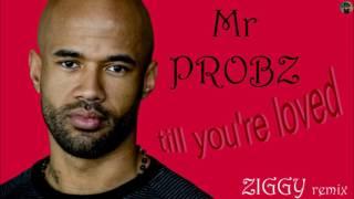 Mr Probz - till you're loved (Ziggy remix)