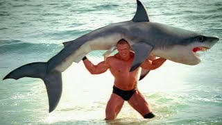 Brock Lesnar F5s a shark: SummerSlam 2003 commercial width=