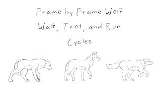 Frame by Frame Wolf Walk, Trot, and Run Cycles