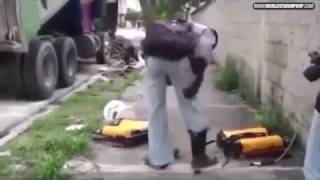 Lol: Pest Control Gets Attacked By Insects!