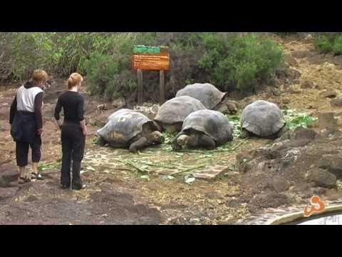 WORLD INSIGHT Reisen –  Ecuador