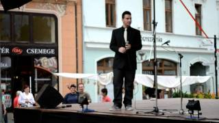 Meggyes Csaba- 2011.09.07-Besame mucho (cover)