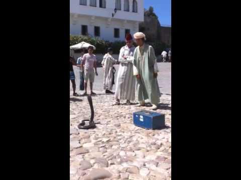 Morocco Sep 2010