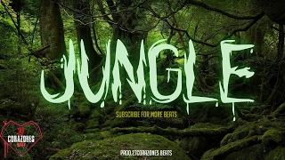 'JUNGLE' insane FREE trap beat 2017 hard aggressive type beat | dark instrumental | prod 27corazones