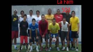 familia 503