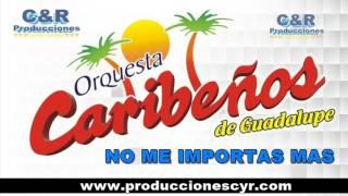 CARIBEÑOS DE GUADALUPE - NO ME IMPORTAS MAS