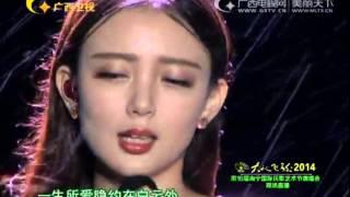 2014南宁国际民歌艺术节演唱会 汪小敏《一生所爱》