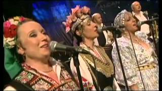 Kalashnikov Goran Bregovic  His Wedding and Funeral Orchestra