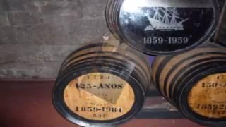 Vinho do Porto   Conjunto Maria Albertina