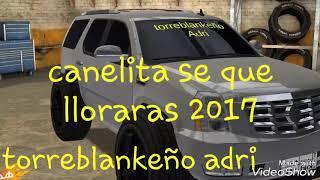 Canelita 2017