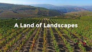 A Taste of Portugal | A Land of Landscapes