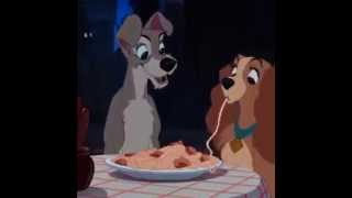 Lady and the Tramp in Real Life