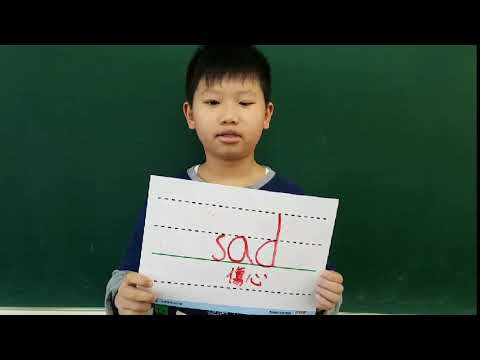 306英文單字03-sad