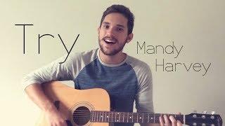 Try - Mandy Harvey (Cover) | Austin W