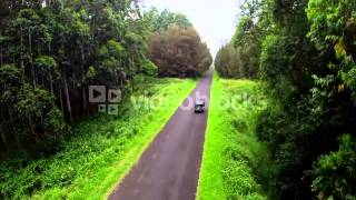 Car Driving Down Forest Road Aerial Stock Video Footage