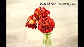 Nightcore|BlackBriar-Preserved Roses