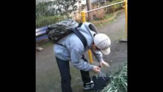 本能寺の変態のちい散歩第二