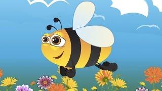 Arı Vız Vız Vız Diye Çalışır - Çocuk Şarkısı