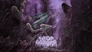 Infant Annihilator - Peadophilic Ultimatum